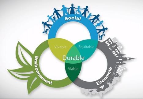 Les plateformes équitables: pour faire émerger une économie collaborative, sociale, solidaire et soutenable. - P2P Foundation | Coopération, libre et innovation sociale ouverte | Scoop.it