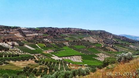 "Is Crete the ""New"" Tuscany? - Jean Newman Glock | Luxury Travel | Scoop.it"