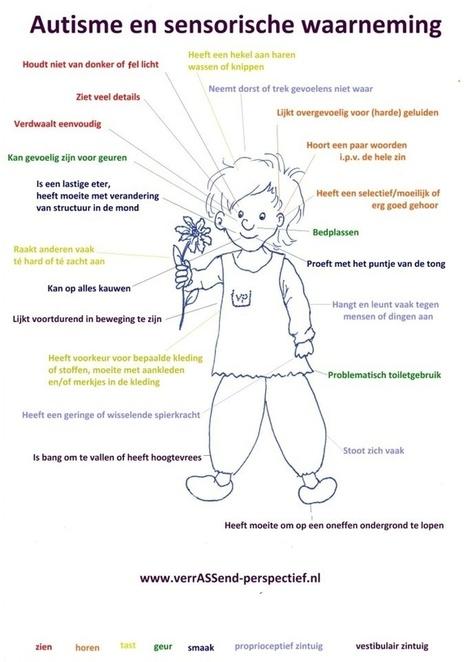 Sensorische Informatieverwerking | | Autisme (Autisme Spectrum Stoornis) | Scoop.it