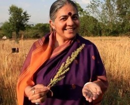Fighting to Preserve the Seed | CSRlive.in (CSR, Sustainability News, Analysis & Connect in India) | Scoop.it