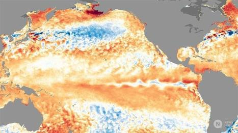"Climate pendulum is swinging rapidly from El Niño to La Niña (""this is example of weather extreme"")  