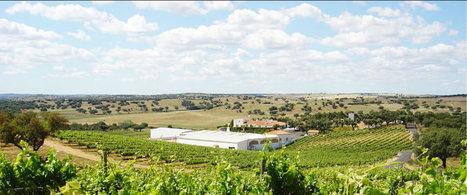 Herdade do Perdigão | Wired Wines of Alentejo | Scoop.it