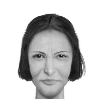 PORTRAIT-ROBOT – Qui connaît le visage d'Emma Bovary ? | UnPeuDeToutNet | Scoop.it