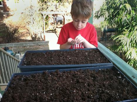Baker Creek Heirloom Seeds | Annie Haven | Haven Brand | Scoop.it