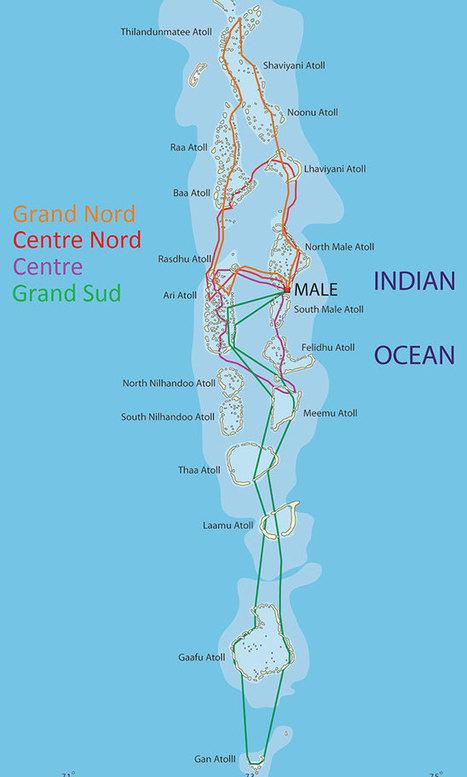 Croisière spéciale Manta aux Maldives | Rays' world - Le monde des raies | Scoop.it
