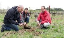 Montpellier - Bio, biodynamie ou agriculture raisonnée : quel choix pour le Mas Piquet ? | Chimie verte et agroécologie | Scoop.it