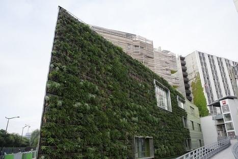 41 murs VÉGÉTALISÉS vont pousser dans Paris | Vélib Le Mag' | URBANmedias | Scoop.it