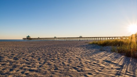 Check Out FollyPalooza at Folly Beach: a Charitable Event Fun for the Entire Family   Real Estate Resources and Tips in Charleston, SC   Scoop.it
