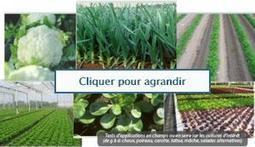 Des biopesticides pour remplacer les pesticides | Chimie biosourcée, Chimie Verte | Scoop.it