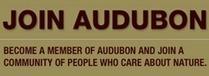 Audubon Magazine | Vertical Farm - Food Factory | Scoop.it