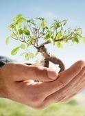 Property Management Services | Vision PEM | Property Management | Scoop.it