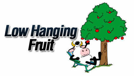 Warning: Avoid No Budget, Low Budget, Quick-Win, Low Hanging Fruit KM! | Dr. Dan's Knowledge Management | Scoop.it