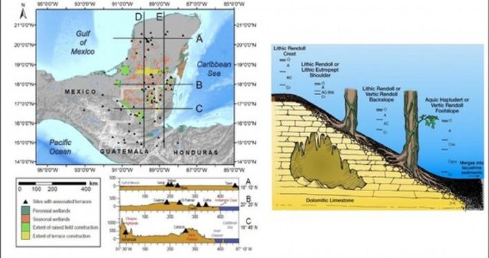 Les anciens mayas auraient eu un profond impact sur l'environnement | Les Découvertes Archéologiques | Kiosque du monde : Amériques | Scoop.it