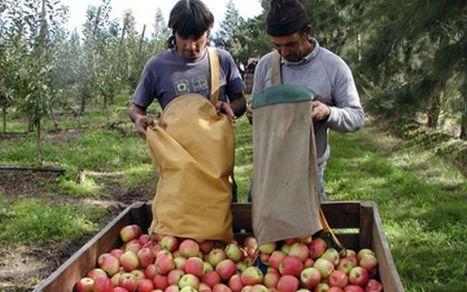 Trabajadores rurales festejan su día por segundo año   Trabajadores Rurales   Scoop.it