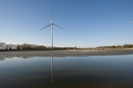 Wind turbine study | Bat Biology and Ecology | Scoop.it