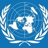 UN's Guiding Principles on Business and Human Rights