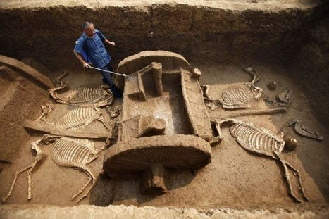 Ancient Chariot Fleet Unearthed in China | World History in Social Studies | Scoop.it