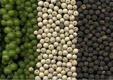 Le Poivre   Epices, aromates, poivre et vanille   Scoop.it