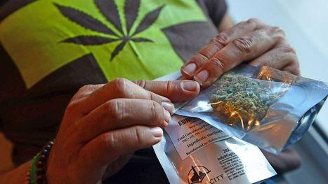 TSA Policy on Medical Marijuana Is Murky But May Be Easing - ABC News | Marijuana Laws | Scoop.it