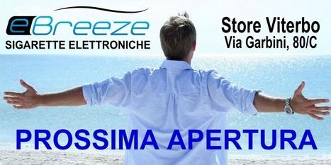 Siraretta Elettronica Viterbo | ZenRo Web Design Portfolio | Scoop.it