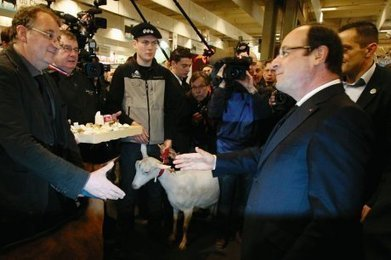 Hollande met les plats cuisinés à l'étiquette - Sud Ouest | Agriculture en Dordogne | Scoop.it