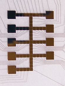 Artificial Cell Organelle on a Chip | Amazing Science | Scoop.it