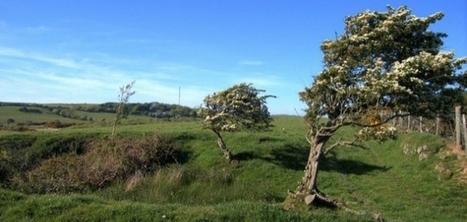 Météo : beaucoup de vent ce week-end en Basse-Normandie | La Manche Libre | Actu Basse-Normandie (La Manche Libre) | Scoop.it