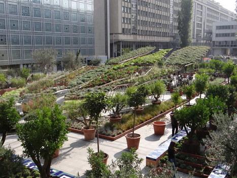 Le jardin éphémère de l'Institut du Monde Arabe | Les colocs du jardin | Scoop.it