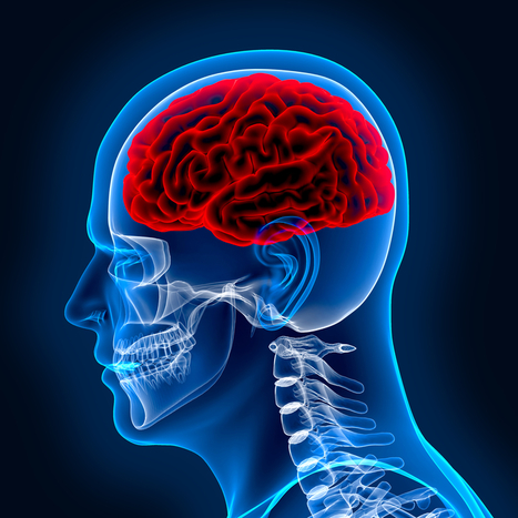 U.S. Centers for Disease Control Reports: U.S. traumatic brain injury affects 3.5 million Americans every year including causing  death and permanent disability | California Brain Injury Attorney News | Scoop.it