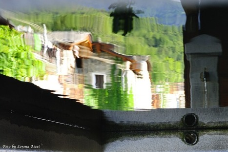 Specchio riflette   Thanks Attitude   Scoop.it