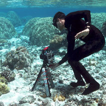 Stanford drones open way to new world of coral research | SUBDocument | Scoop.it
