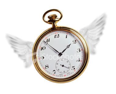 Time Flies When You're Having Goal-Motivated Fun   omnia mea mecum fero   Scoop.it