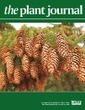 A host plant genome (Zizania latifolia) after a century-long endophyte infection | Plant Genomics | Scoop.it