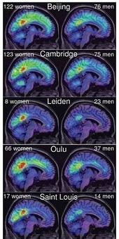 Women Are Better Connected… Neurally | Social Neuroscience Advances | Scoop.it