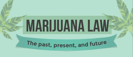 Cannabis Law: The Past, Present and Future | Scouting the Future | Scoop.it