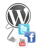 B2B Social Media Optimisation - Best Practices on WordPress | SEO, SEM & Social Media NEWS | Scoop.it