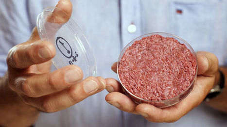 Bientôt dans vos assiettes, les protéines du futur   Attitude BIO   Scoop.it