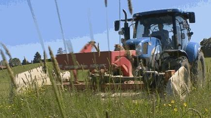 Stagnation im Bioanbau: Warum geben Biobauern immer häufiger auf? | Landwirtschaft und Forst | Unser Land | Bayerisches Fernsehen | Fernsehen | BR.de | FilFallt | Scoop.it