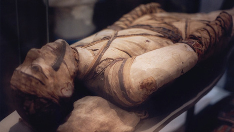 How Ancient Embalmers Pulled The Brains And Guts Out Of Mummies | Ancient world | Scoop.it