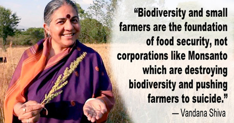 Vandana Shiva: Small Farmers Are Foundation to Food Security, Not Corporations Like Monsanto | OrganicNews | Scoop.it