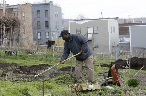 City Gardeners Track the Value of Urban Farming | Community Gardening Resources | Scoop.it