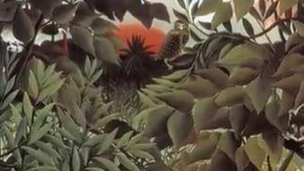 le Douanier Rousseau, un peintre sédentaire et inspiré   Teaching FRENCH   Scoop.it