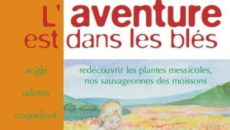 Jardins | Drôme Ardêche Solidaires | Jardins partagés de là-bas et au-delà - Community gardens from the world | Scoop.it