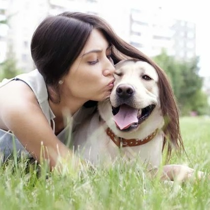 The Therapeutic & Health Benefits of Pets| Success Tips, Motivational, Health Tips, Self Improvement Success Manual | Success Manual | Scoop.it