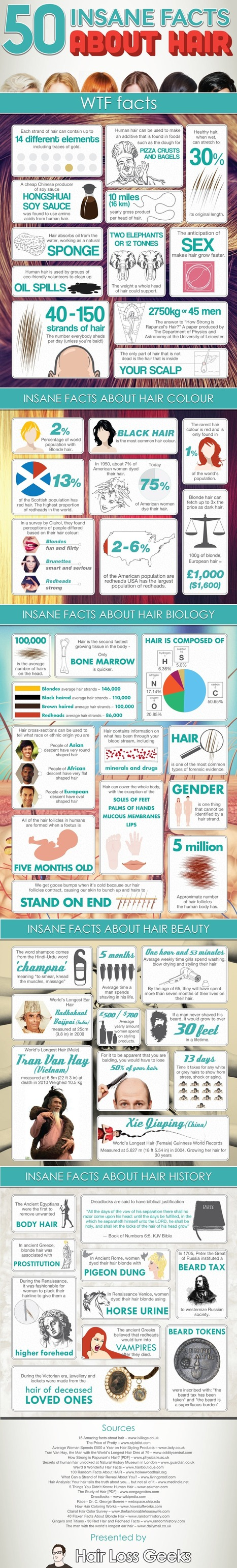 50 Insane Facts About Hair {Infographic} - WomanlyWoman.com | Infograpic | Scoop.it