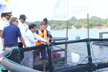 Oceanpick inaugurates groundbreaking aquaculture venture | Legal issues: Aquaculture and Fishing | Scoop.it
