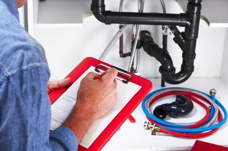Call an Expert Plumber When Your Plumbing System Is Bunged by Pet Hair | Athens Plumbing | Scoop.it