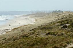 best beaches: Papamoa - Stuff.co.nz | Travel (K)Now More | Scoop.it