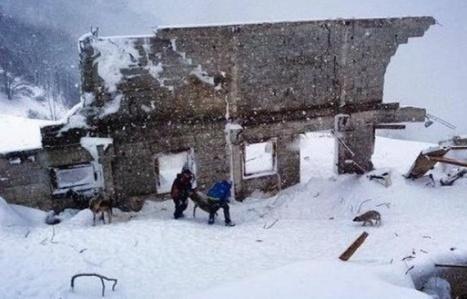 Pyrénées: 8 jours après, des brebis retrouvées vivantes sous la bergerie d'Aulon, détruite par une avalanche | Vallée d'Aure - Pyrénées | Scoop.it