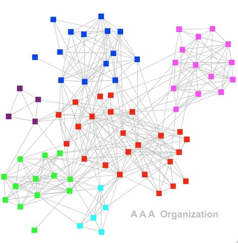 T N T — The Network Thinkers: A A A Organization | social networking | Scoop.it